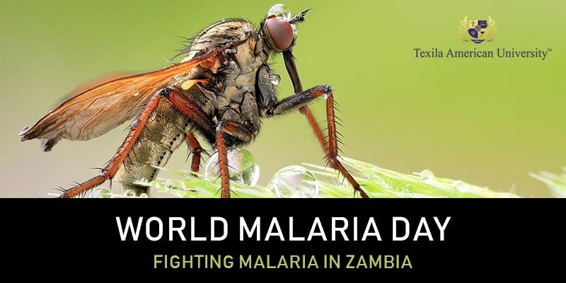 World-Malaria-Day-Zambia