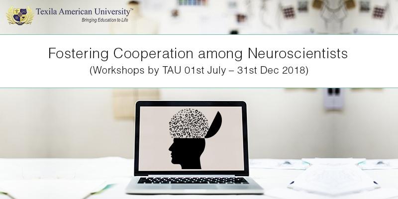 workshops-on-neuroscience