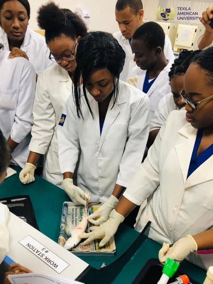 students-at-lab
