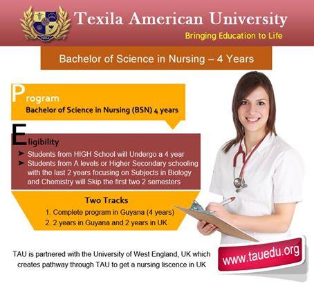 Bachelor-of-science-in-nursing