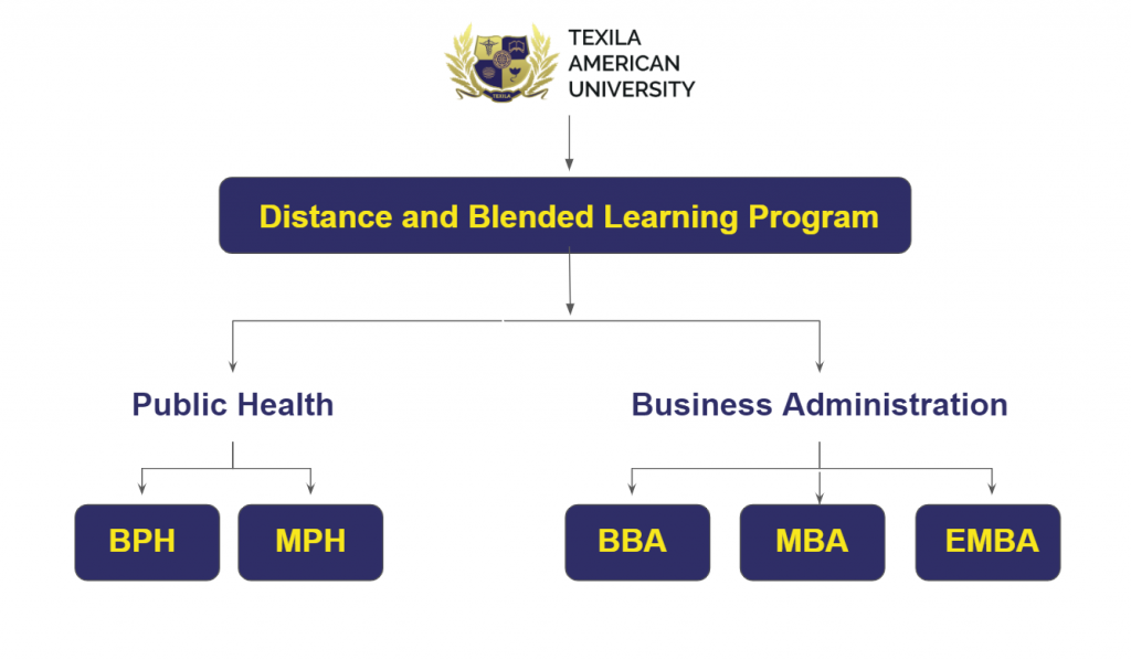 DBLP Courses offered by Texila